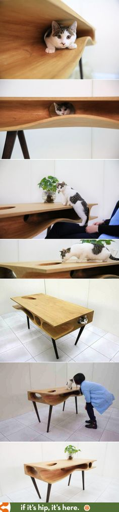 The CATable lets feline-owners work undisturbed while providing lot of play for their cat.