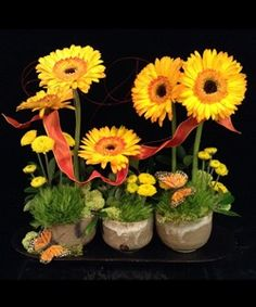Gerberas and McCarty pottery. Such a great combination! Mccarty Pottery, Florals, Pretty, Plants, Style, Floral, Swag, Stylus, Plant