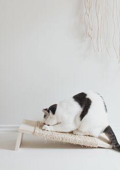 Rasguñador casero  para gatos -------------------- Claw Control: The DIY Minimalist Cat Scratching Post