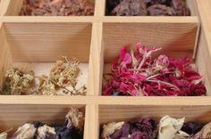 Pflanzen2 Tray, Board