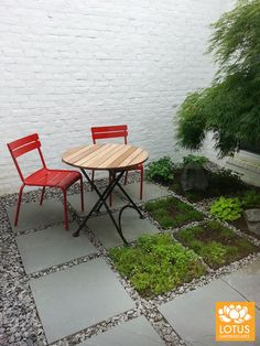 Who's up for some refreshments? Outdoor Furniture Sets, Outdoor Decor, Lotus, Exterior, Home Decor, Courtyards, Lotus Flower, Decoration Home, Room Decor