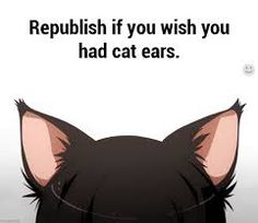 Image result for anime cat ears