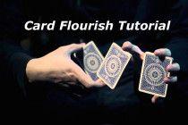 card flourish tutorial