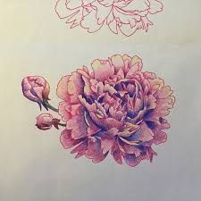 peony tattoo - Google Search
