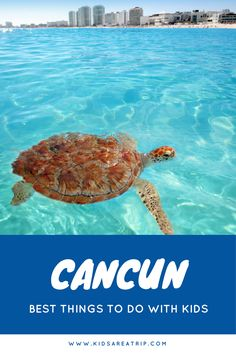 The perfect vacation might involve relaxing all day at a resort. If you're looking to explore beyond the hotel, here are the best things to do with kids in Cancun. - Kids Are A Trip