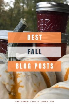 Fall is such a fun season, and I have a ton of wonderful recipes, tutorials, and projects to take you all the way to winter. Enjoy these best Fall Blog Posts! Easy Canning, Canning Recipes, Maple Whiskey, Canning Peaches, Kombucha How To Make, Easy Vegetables To Grow, Portable Snacks, Best Cookbooks