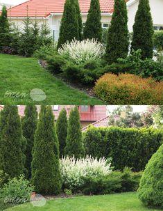 zamiast tui | green thinking – blog o projektowaniu ogrodów