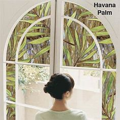 improvements-thomas-hicks-decorative-window-film~3975972w.jpg (300×300)