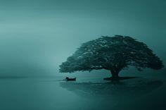 Фотография Serenity автор iD's  на 500px