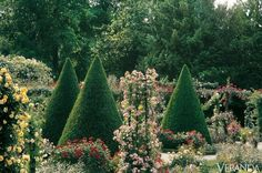 Rose Garden in the Parc de Bagatelle, Paris, Veranda