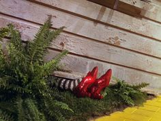 The Wizard Of Oz | Beautiful Stills from Beautiful Films