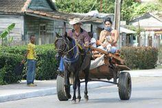 Trasporte Cubano!  Un vehículo moderno Socialista con un caballo de fuerza. @paxeco00 #Cuba