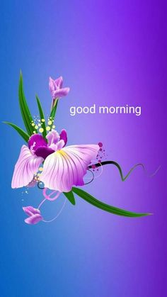 Everybody keeps searching for good morning images with beautiful flowers wish their friends good morning. In today's post, we have brought you a great collection of good morning images with beautiful flowers. Good Morning Flowers Quotes, Good Morning Friends Images, Good Morning Beautiful Pictures, Good Morning Happy Sunday, Good Morning Roses, Good Morning Beautiful Images, Good Morning Cards, Morning Pictures, Morning Quotes
