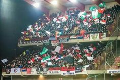 Away days are the best day #casuals #hooligans #groenehaas #feyenoord #support