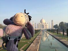 Eeyore was in awe of the Taj Mahal.