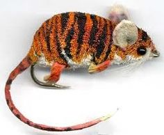 OMG!!! a tiger striped, spun deer hair mouse!!! I aspire to being able to tie like this one day!
