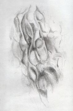 """""""Walnut,"""" 5x7 in. Sarah Szabo (2012)"""