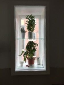 raamkozijnen laten maken