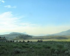Horseback riding in the national parks: Yellowstone National Park