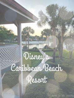 Travel: Disney's Caribbean Beach Resort 2018 - Poet in the Pantry Caribbean Beach Resort, Beach Resorts, Disney Planning, Disney World Vacation, Poet, Pantry, Adventure, Travel, Pantry Room