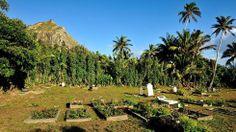Welcome to Pitcairn Island, population 48 - weather.com