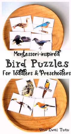 DIY Bird Puzzles For Toddlers And Preschoolers With Real Photos is part of Montessori toddler activities - Does your little one loves birds Would you like to make your own Montessoriinspired puzzles Get your free printable and tutorial here Montessori Preschool, Preschool Learning, Toddler Preschool, Toddler Crafts, In Kindergarten, Teaching, Educational Activities For Kids, Preschool Activities, Puzzles For Toddlers