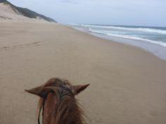 White Pearl Resort, Ponta Mamoli, Moçambique | Viaje Comigo Beach, Water, Outdoor, Traveling, Gripe Water, Outdoors, The Beach, Beaches, Outdoor Games
