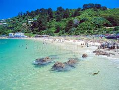 Scorching Bay Beach near the entrance to Wellington Harbour ... www.naturespic.com550 × 415Search by image Scorching Bay Beach near the entrance to Wellington Harbour, Wellington, Wellington City District, Wellington Region, New Zealand (NZ) Stock Photo