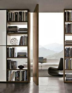 Bibliothèque qui laisse passer la lumière. Porte originale