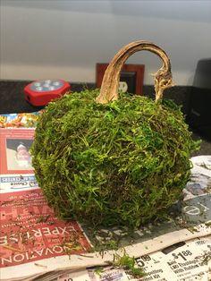 Moss pumpkin diy from dollar tree pumpkins