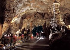 The mesmerizing beauty of the Postojna Cave and the mysterious castle of Predjama rank among the most precious jewels of Slovenia. Discover the wonderful underground world of Postojna Cave and explore the striking medieval Predjama Castle.