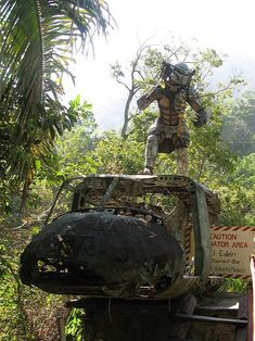 Filming Locations for Predator in Mexico. Wolf Predator, Predator Art, Alien Vs Predator, Puerto Vallarta, Filming Locations, Tmnt, Mexico, Awesome, Outdoor Decor