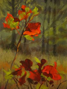 """Glowing Oak Leaves"" by Jude Tolar. Pastels on sanded paper. Pastel Artwork, Pastel Paintings, Flower Art, Art Flowers, Pastel Landscape, Cool Art, Awesome Art, Contemporary Art, Artsy"