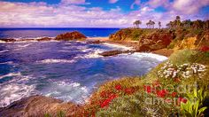 Laguna Beach is one of our favorite places in California. We were married in the Gazebo on the Cliffs nearby at Sunset and had our reception in Victor Hugo's Restaurant, with its huge Rose Gardens along the Cliff Walk.