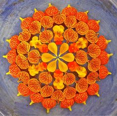 "Flower Mandalas by Kathy Klein | Arizona-based artist Kathy Klein creates gorgeous flower circles which she calls ""danmalas"" and then leaves them where they were created as a gift to whoever discovers them. Danmalas in vedic Sanskrit means ""the giver of flower garlands"". 