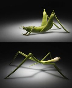"Greenpeace ""Insects"" by Giorgi Popiashvili, via Behance. ""The DNA of genetically modified plants may contain the genes of insects, animals or even viruses. These products may potentially cause harm to your health."""