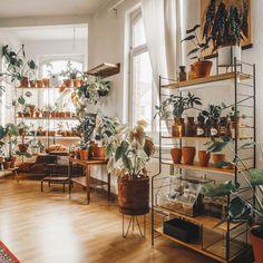 How to Style plants on shelves Inside Plants, Room With Plants, House Plants Decor, Plant Decor, Interior Design Plants, Perfect Plants, Aesthetic Room Decor, Vintage Room, Room Decor Bedroom