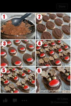Reindeer arrowroot biscuits