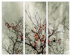 """Saatchi Online Artist Daniel Ferreira-Leites Ciccarino; Digital, """"Triptych with natural motive"""" #art"""