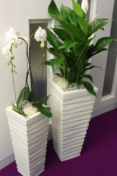 Bring peace to your home with the peace lily - living ideas and decoration- Bringen Sie Frieden in Ihr Zuhause mit der Friedenslilie – Wohnideen und Dekoration Peace lily and orchid - Peace Lily, Artificial Plant Wall, Artificial Flowers, House Plants Decor, Plant Decor, Decoration Plante, Office Plants, Deco Floral, Interior Plants