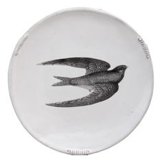 Swift Plate