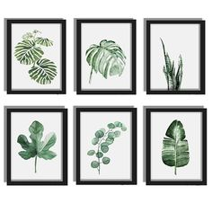 Modern Watercolor Green Plant Canvas Painting Palm Leaf Art Print Wall Poster | eBay