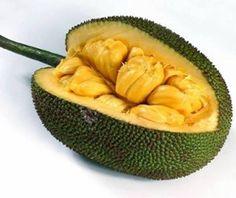 Джекфрут: полезные свойства/Jackfruit: beneficial features. Lev Aramilev - ThingLink