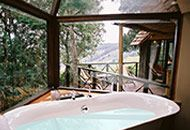 Phantom Forest Knysna is a luxury eco reserve destination in afromontane forest along South Africa's coveted Garden Route. Winner of World Travel Awards numerous times. Places To See, Places Ive Been, Outdoor Baths, Knysna, Holiday Places, Romantic Destinations, Forest House, Going On Holiday, Romantic Getaway
