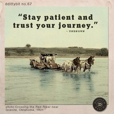 "ddittybit no. 67 ""Stay patient and trust your journey."""