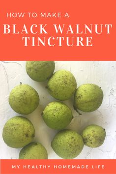 How to make a Black Walnut Tincture.  My Healthy Homemade Life