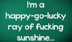 f36bea97a ... happy-go-lucky ray of fucking sunshine. See more. Most of the time....  Life Quotes, Funny Quotes, 2015 Quotes