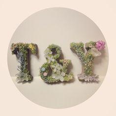必須&定番のウェディング小物!可愛いイニシャルオブジェまとめ* | marry[マリー] Wedding Welcome Board, Welcome Boards, Wedding Clip, Diy Wedding, White Shower, Crafty Craft, Wedding Images, Birthday Decorations, Dried Flowers