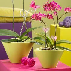 Кашпо для орхидей TROPICAL GREEN  615/22