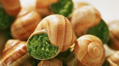 """Escargots"" from Bourgogne http://www.discoverfrance.com/european-tours-destinations/burgundy-bike-tours"